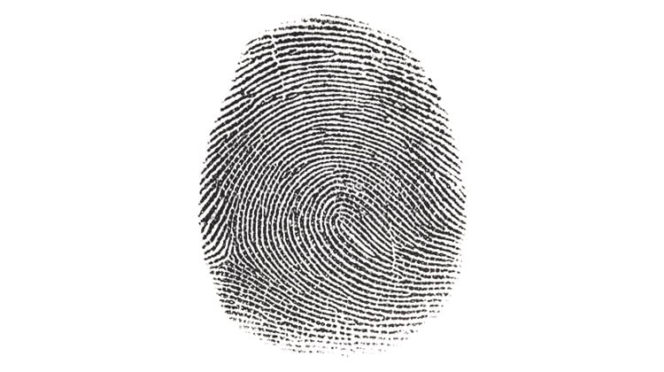 A large fingerprint