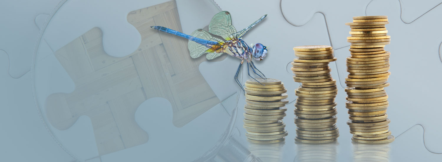 A dragonfly flying near some golden coins with the backdrop of a jigsaw puzzle