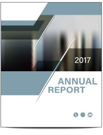 A thumbnail of the front page of a report with the words 2017 Annual Report