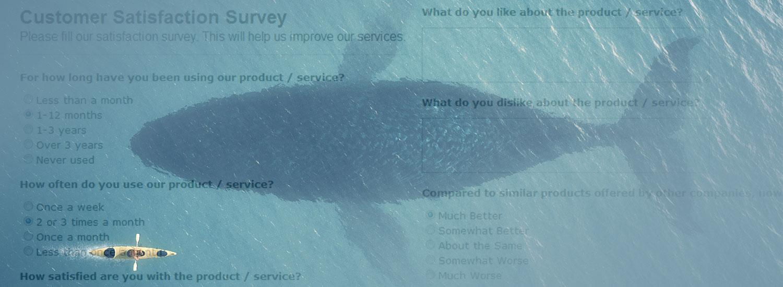 Customer Survey Analysis Banner