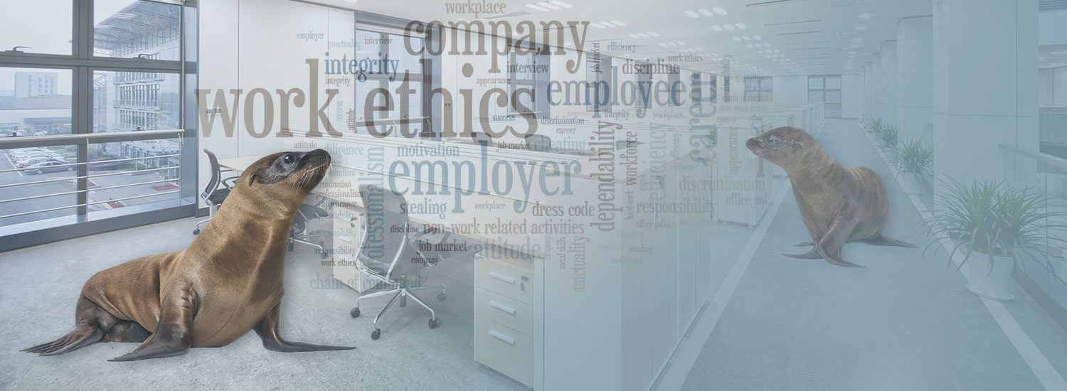 Employee Survey Analysis Banner