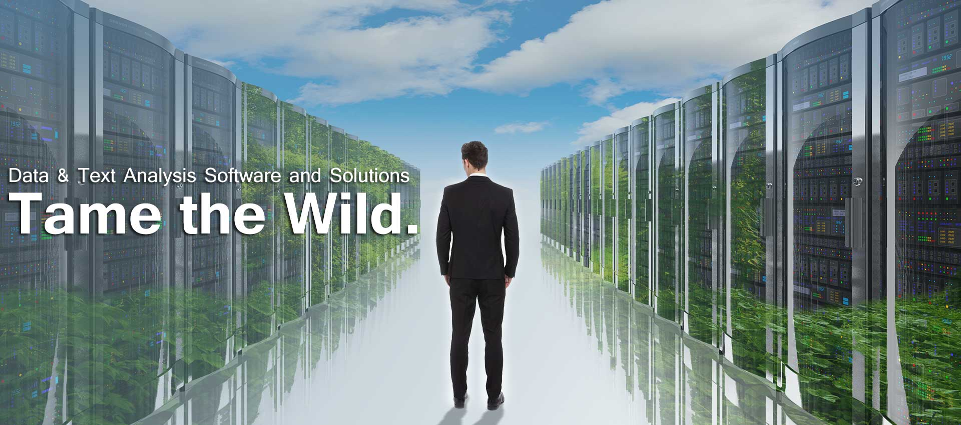 Tame the Wild Homepage Banner