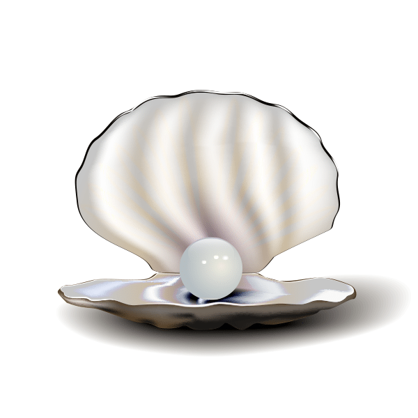 An open clam containing a pearl
