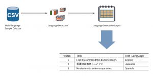 Language Detection in PolyAnalyst