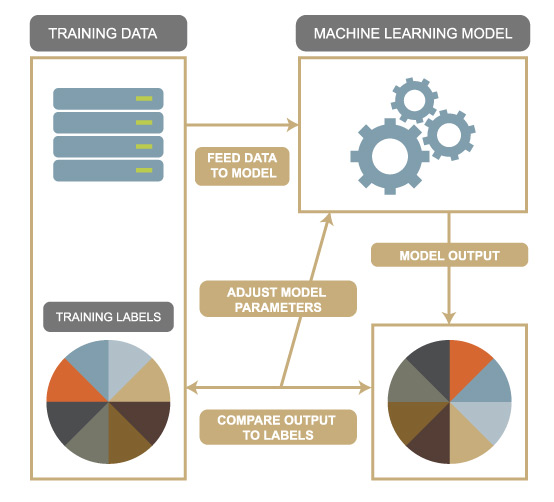 machine learning processs