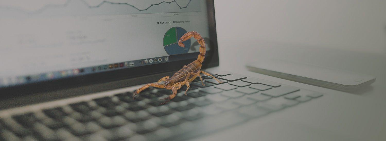 Risk Management Solutions Banner