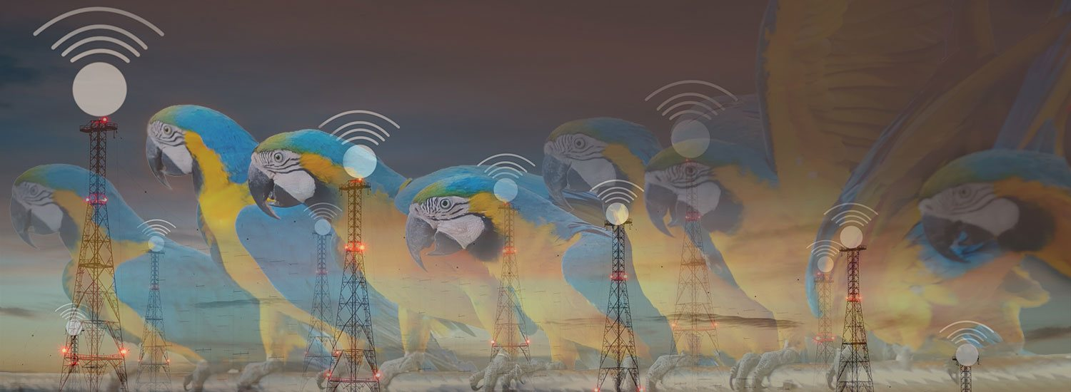 Telecom Industry Solutions Banner
